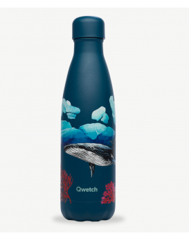 Gourde banquise baleine 500 ml