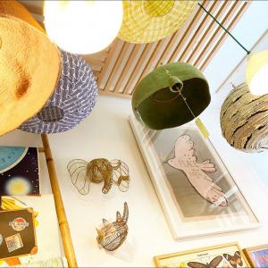 |Luminaires| Nos abat-jours fait-main💚  Des matières naturelles pour un éclairage doux.  Belle soirée🌙   #luminaire #madeinfrance #faitmain #decorationinterieur #conceptstore
