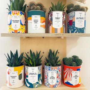 |Plantes| Green is the new black💚🖤  Je crois que ça va être notre nouveau slogan👊🏻  #green #cactus #interior #greenlife #plantes