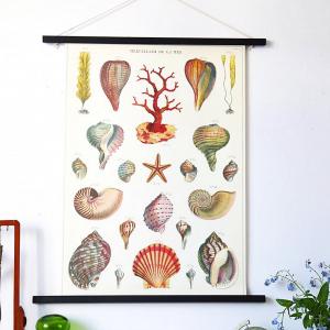 Une de vos affiches préférées de la nouvelle collection de Cavallini: Les merveilles de la mer  Elle provient des archives de la marque qui collectionne depuis 1989 les planches et affiches du XIXème siècle au milieu du XXème siècle.  #papeterie #vintagestyle #naturaldecor #cavallini